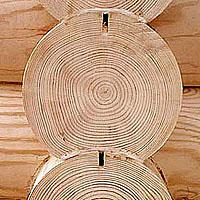 годовые кольца бревен (фото)