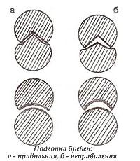 Бревна должны быть хорошо подогнаны друг к другу чтобы сруб был теплым (схема)